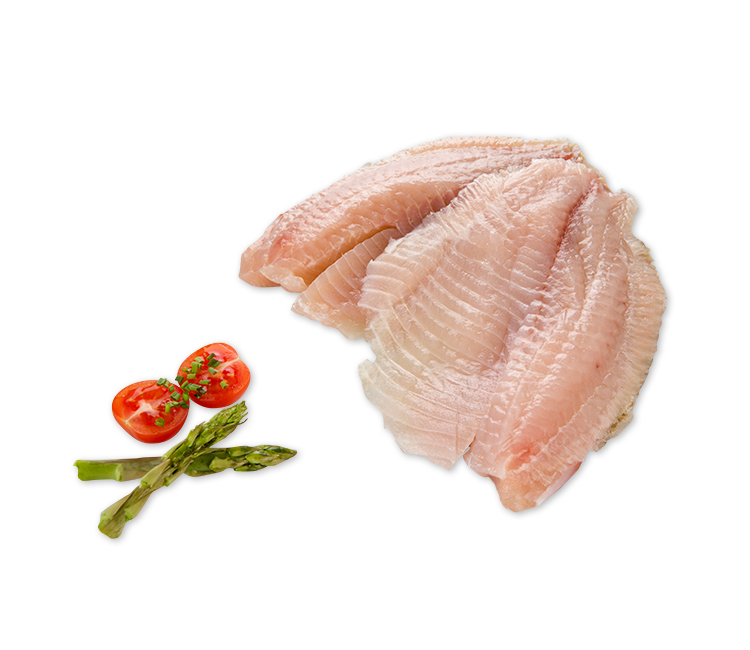 FILETE DE TILAPIA SP 3/5 1 KG