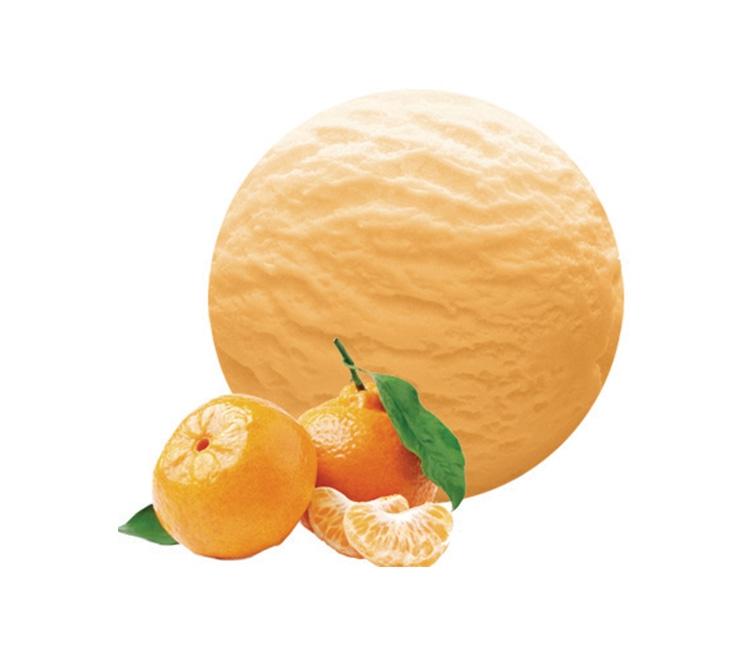 Helado Sorbete de Mandarina 5 L